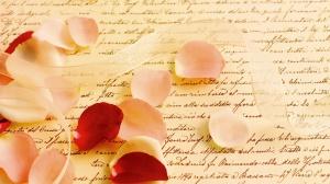 love-wallpapers-love-rose-petals-wallpaper-31891
