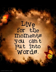 33348-Live-For-The-Moments-You-Cant-Out-Into-Words