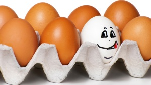 eggs-with-personality