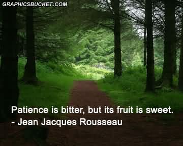 patience-is-bitter-but-its-fruit-is-sweet-jean-jacques-rousseau