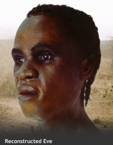 A skull of Mitochondrial Eve was discovered, and through digitally reconstructing her features, this image was constructed.