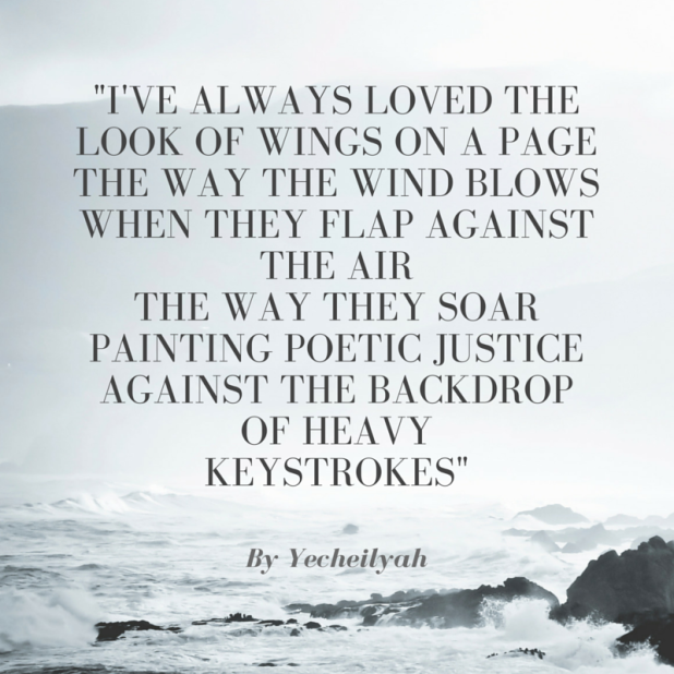 I've always loved the look of wings on a pagethe way the wind blowswhen they flap against the airthe way they soartaking my mind with them