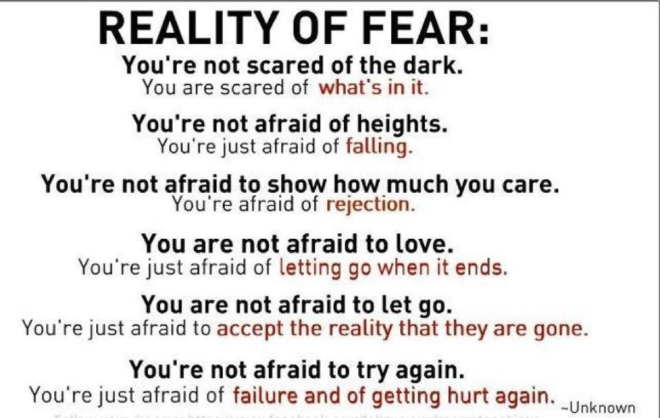 2047870168-reality-of-fear