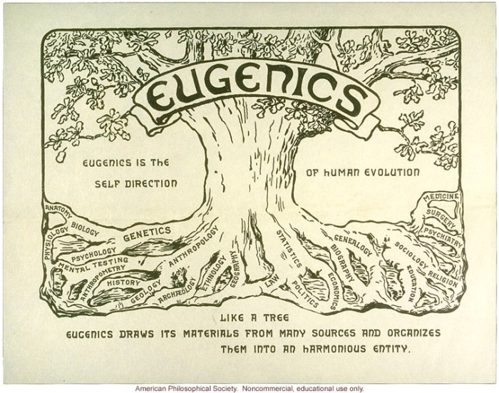 233-eugenics-tree-logo